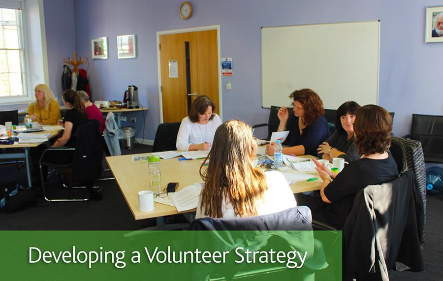 Developing a Volunteer Strategy