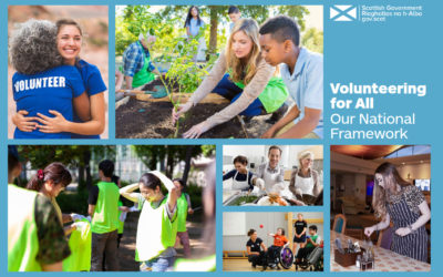 volunteer framework